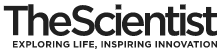 The Scientist Magazine®